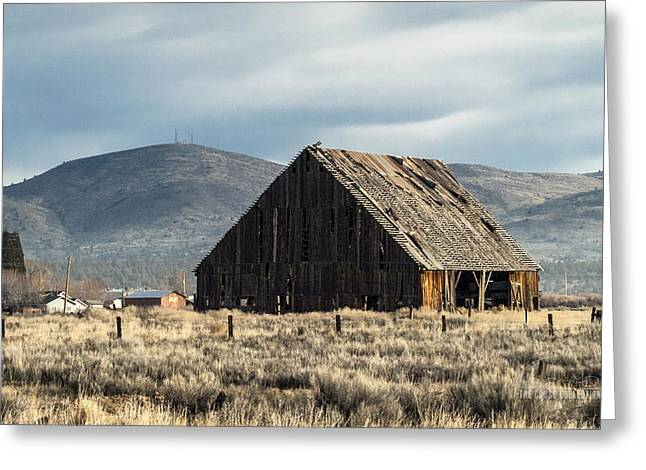 The Old Barn At The Edge Of Town Greeting Card by The Couso Collection