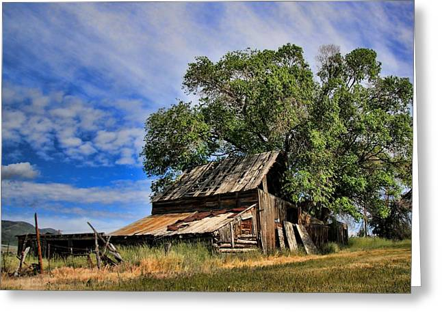 The Old Barn Greeting Card by Gene Praag