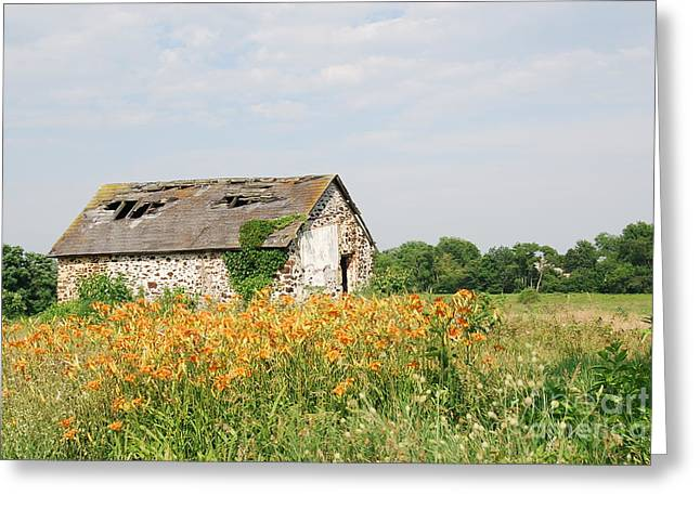 The Old Barn In Moorestown Greeting Card