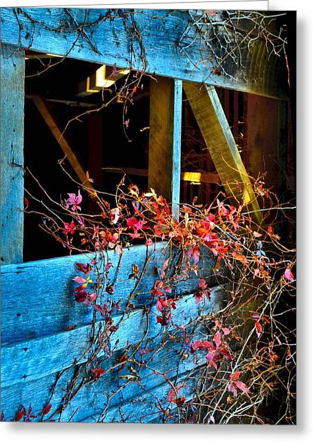 The Old Barn Wall Greeting Card by Julie Dant