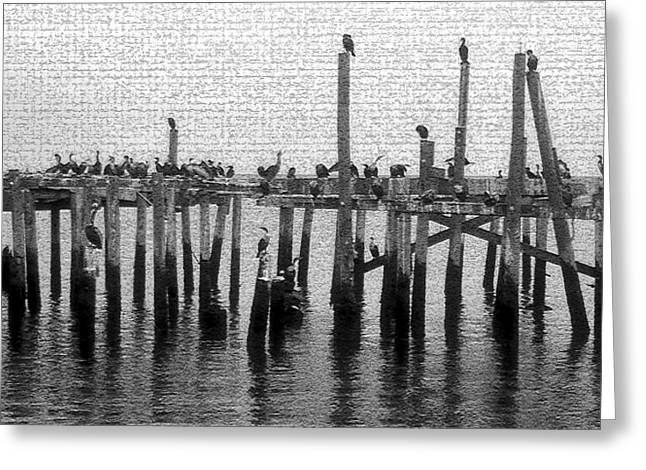 The Old Cedar Key Pier Greeting Card by David Lee Thompson
