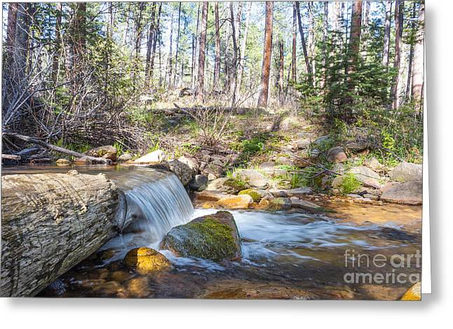 Greeting Card featuring the photograph The Old Creek Falls by Anthony Citro