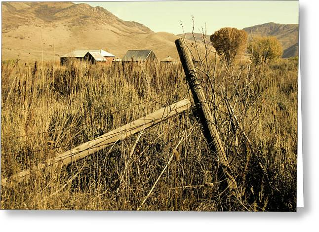 Greeting Card featuring the photograph The Old Fence Post by David King