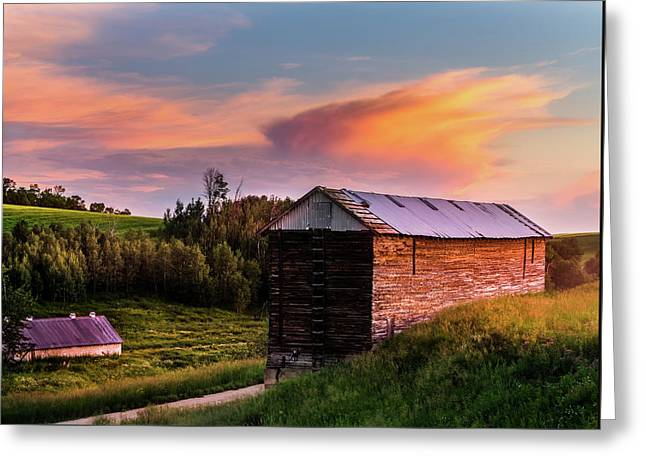 The Old Granary Greeting Card by TL Mair