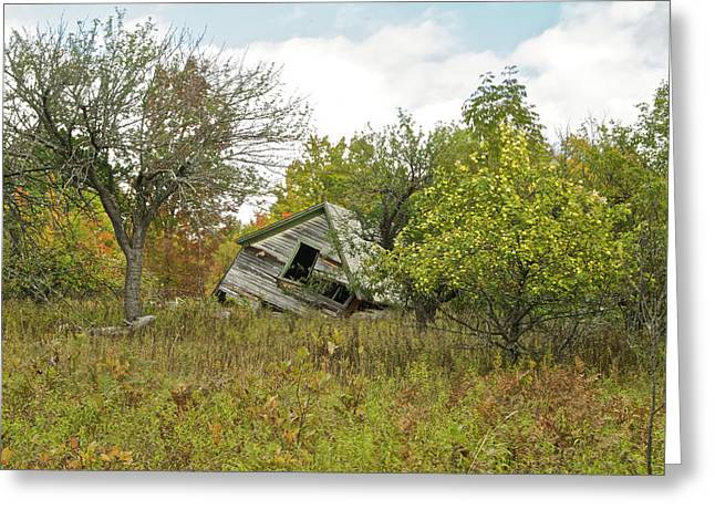 The Old Homestead And Orchard Greeting Card by Michael Peychich
