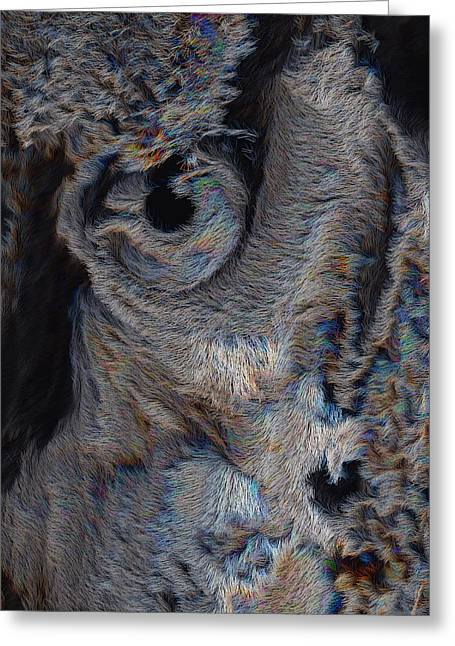 The Old Owl That Watches Greeting Card by ISAW Gallery