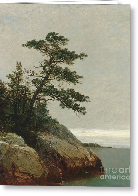 The Old Pine, Darien, Connecticut, 1872  Greeting Card by John Frederick Kensett
