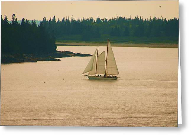 The Old Schooner Greeting Card by Dennis Curry