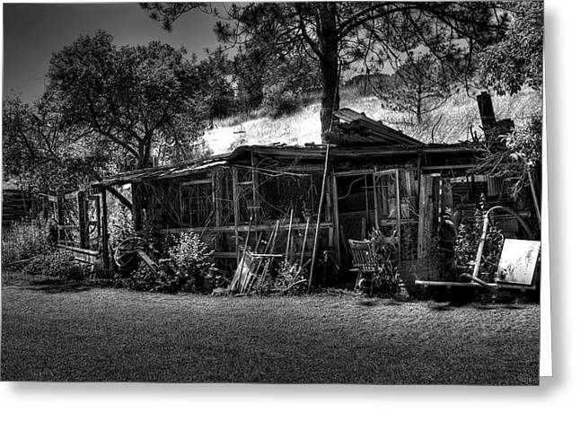 The Old Shed II Greeting Card by David Patterson
