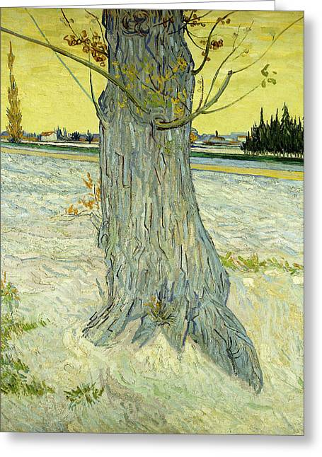 The Old Tree Greeting Card by Vincent Van Gogh