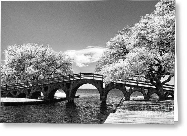 The Old Wood Bridge Greeting Card by Jeff Holbrook
