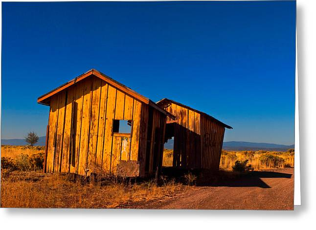 The Ole Yeller Shed Greeting Card by Laura Ragland