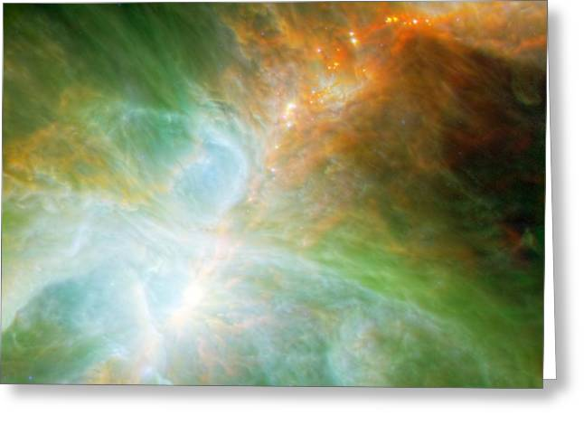 The Orion Nebula  Greeting Card by American School