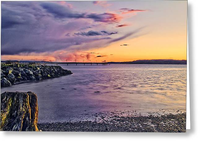 Sunset Bay State Park Greeting Cards - The Other Hand - Des Moines Creek Park  Greeting Card by James Heckt