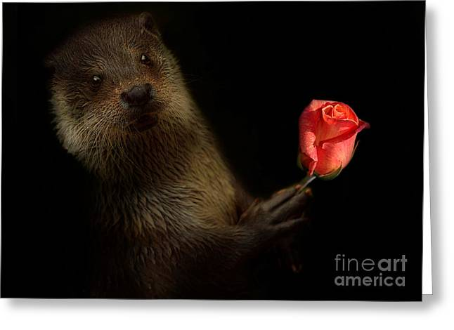 Greeting Card featuring the photograph The Otter by Christine Sponchia