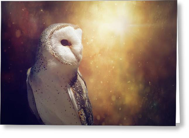 The Owl Greeting Card by Margaret Goodwin