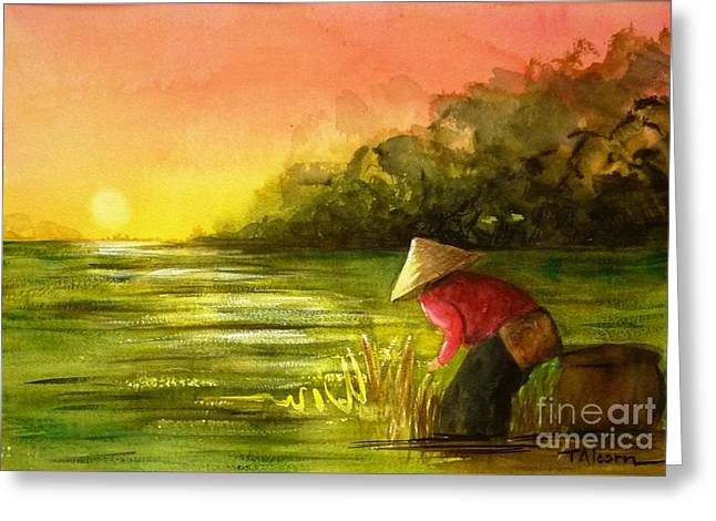 The Paddy Field Greeting Card by Therese Alcorn