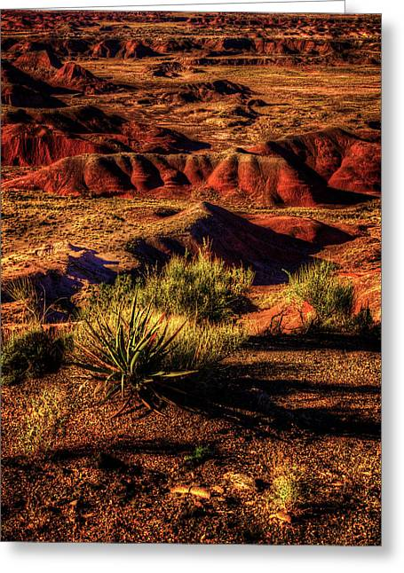 The Painted Desert From Kachina Point Greeting Card