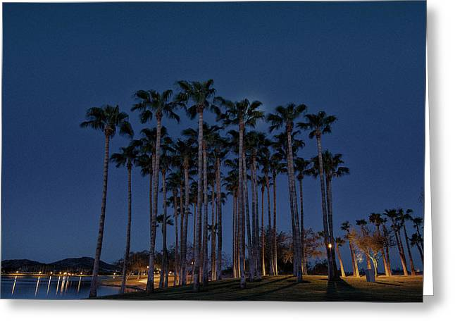 The Palms Greeting Card by David Whitten