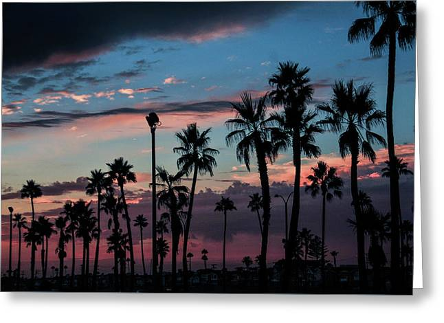 The Palms Greeting Card by Ralph Vazquez