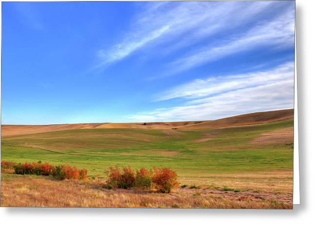 The Palouse Hills In September Greeting Card