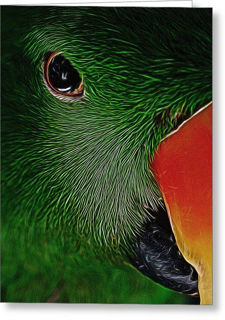 The Parrot Digital Art Greeting Card by Ernie Echols