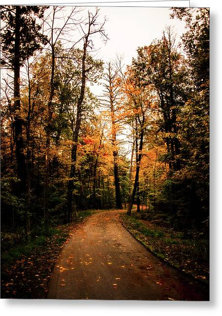 The Path Greeting Card by Annette Berglund