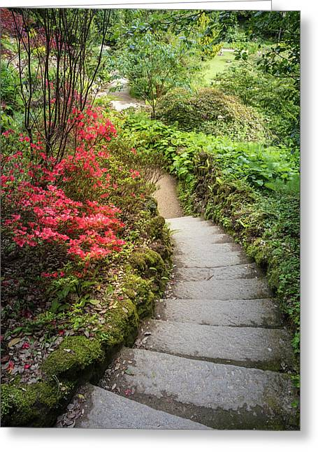 The Path At Powerscourt Gardens Greeting Card