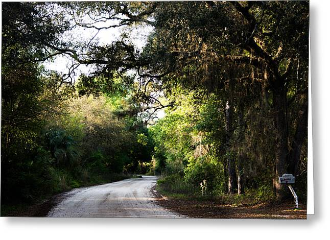 The Path Home Greeting Card