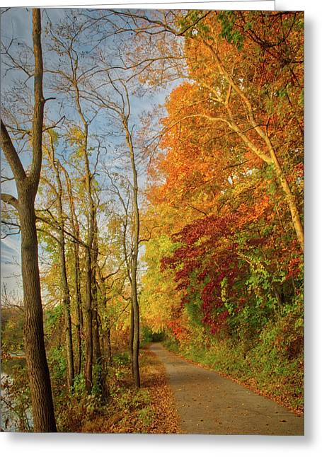 Greeting Card featuring the photograph The Path In Fall by Mark Dodd