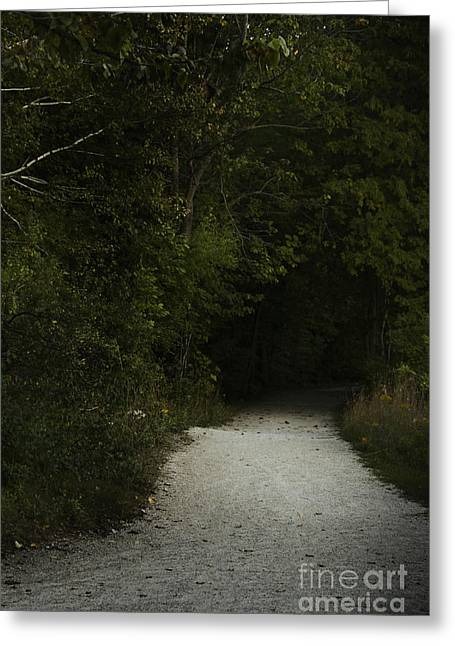The Path In The Darkness Greeting Card