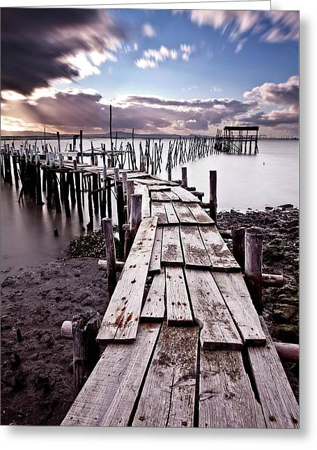 Greeting Card featuring the photograph The Path by Jorge Maia