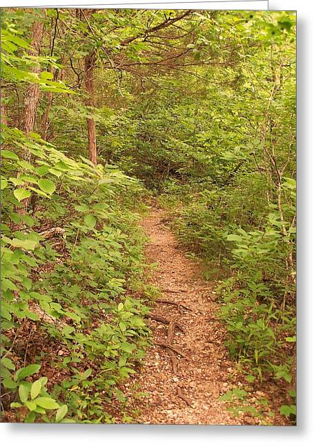 The Path Greeting Card by Joseph Norvell
