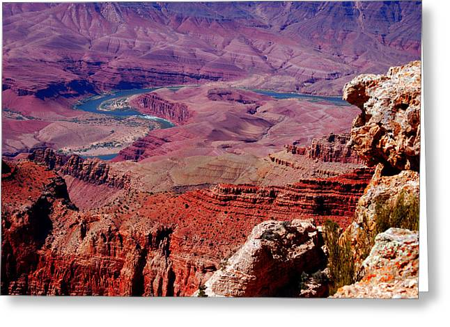 The Path Of The Colorado River Greeting Card by Susanne Van Hulst