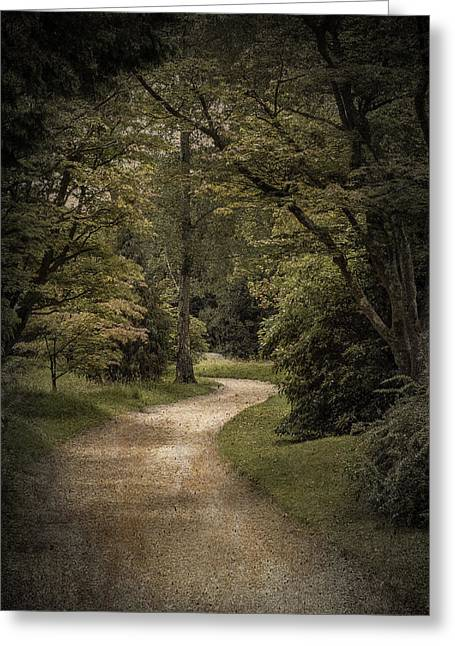 Greeting Card featuring the photograph The Path by Ryan Photography