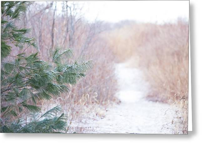 The Path Untraveled  Greeting Card