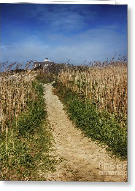 The Pathway Home Greeting Card by Tom Gari Gallery-Three-Photography