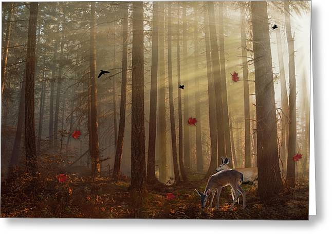 The Peace Of An Autumn Sunset Greeting Card