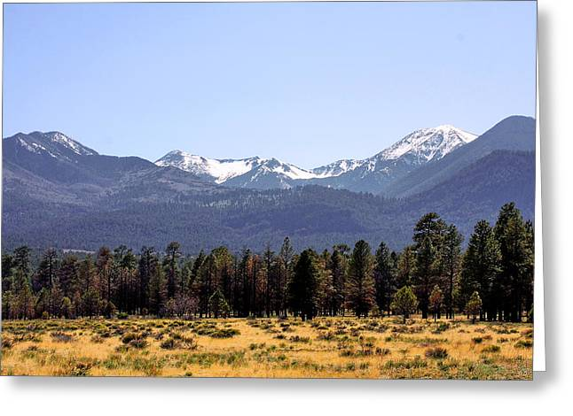 Snow Capped Greeting Cards - The Peaks - Where earth meets heaven Greeting Card by Christine Till