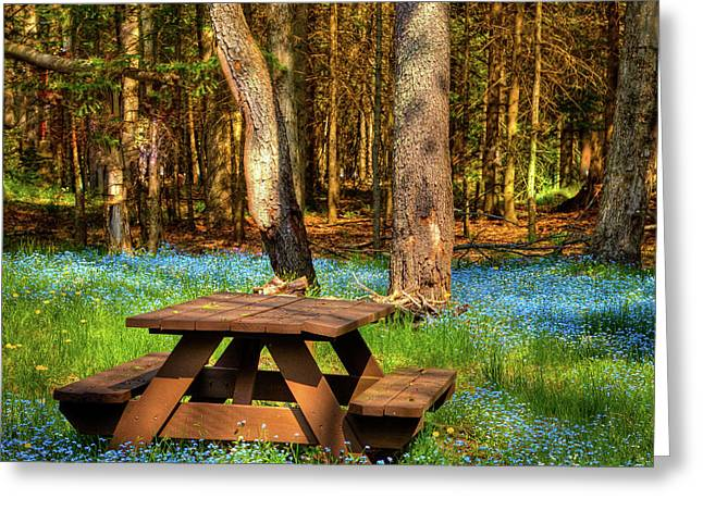 The Perfect Picnic Spot Greeting Card by David Patterson