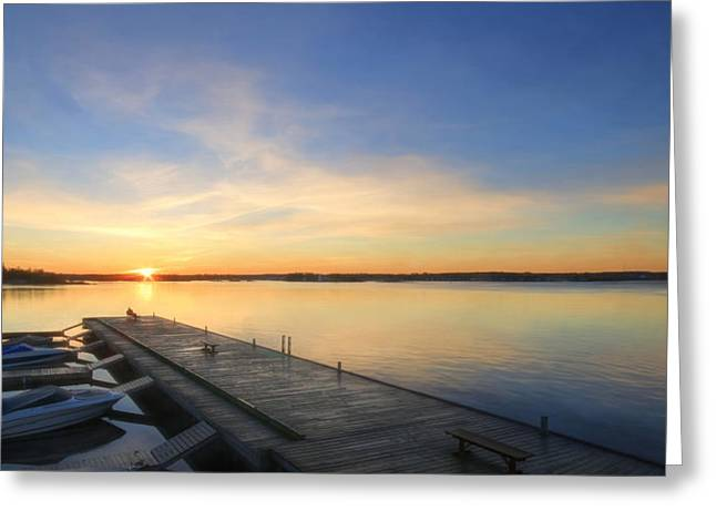The Perfect Spot Greeting Card by Lori Deiter