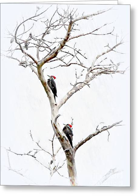 The Pileated Pair Greeting Card by Benanne Stiens