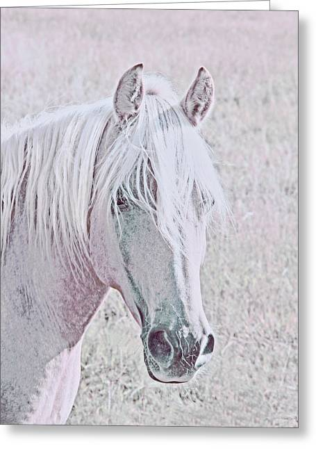 Greeting Card featuring the photograph The Pink Horse by Jennie Marie Schell