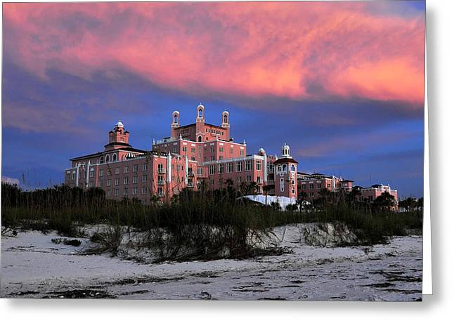 Sea Oats Greeting Cards - The Pink Lady Greeting Card by David Lee Thompson