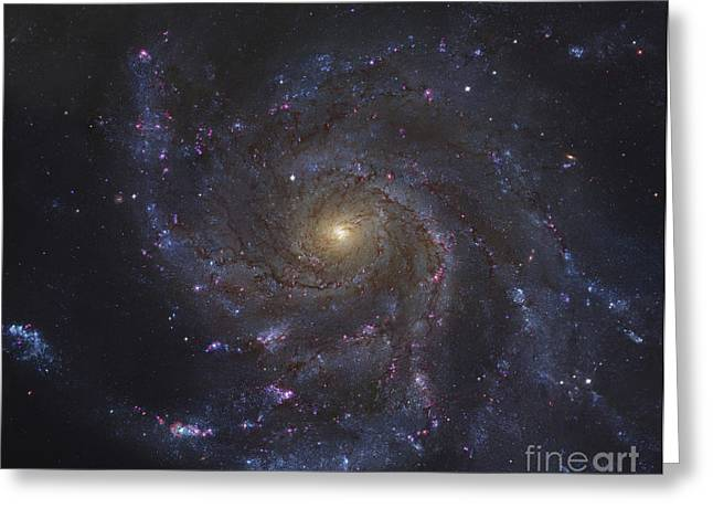 The Pinwheel Galaxy Greeting Card by Robert Gendler