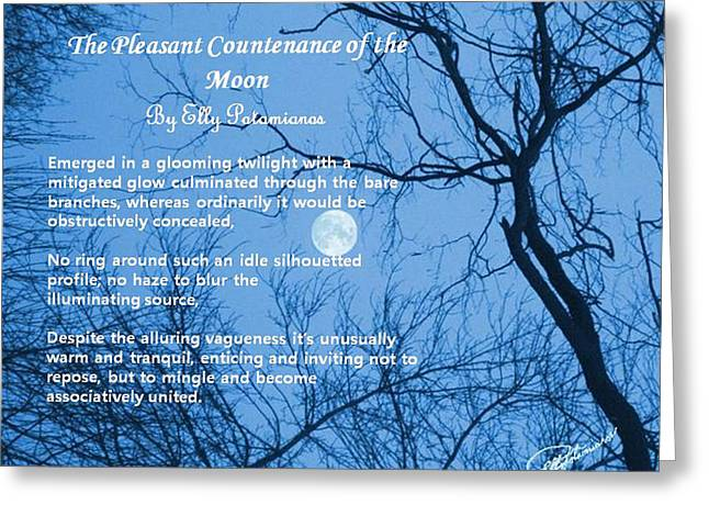 The Pleasant Countenance Of The Moon Greeting Card