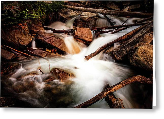 The Plunge Pool Greeting Card by TL Mair
