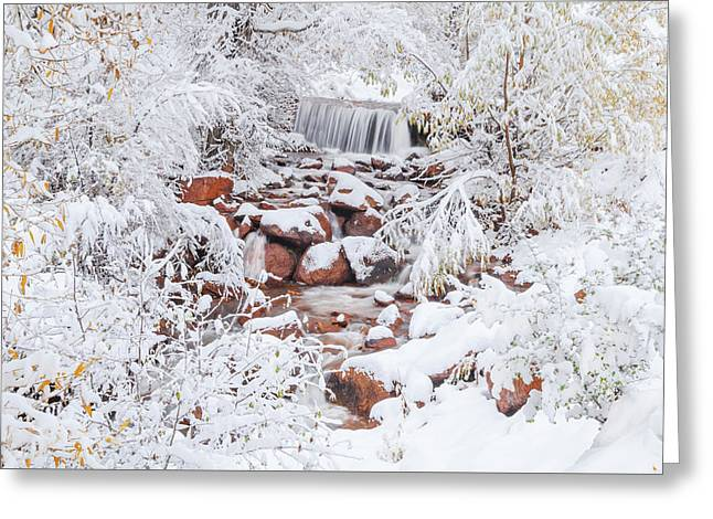 The Poetic Beauty Of Freshly Fallen Snow  Greeting Card