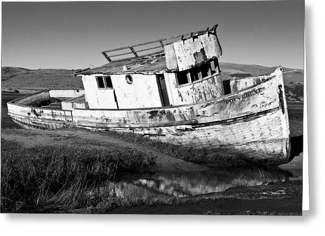 The Point Reyes Greeting Card