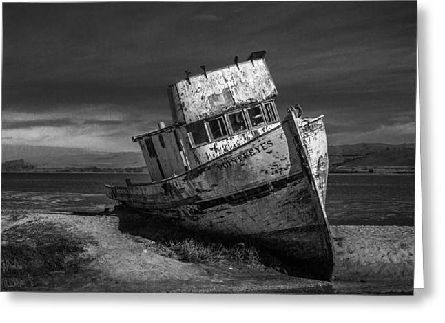 The Point Reyes In Black And White Greeting Card by Bill Gallagher